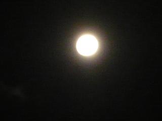 前日の満月.JPG
